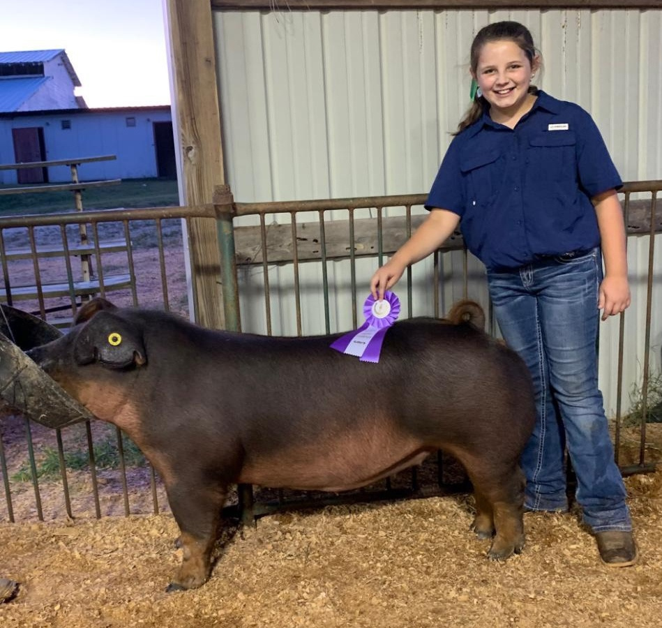 Ann Thomas Lowery 2019 Decatur County Fair Champion Duroc Gilt Supreme Champion Gilt Overall