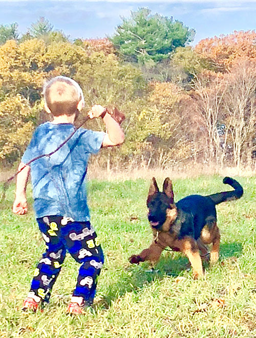 Puppy Playing with a Kid