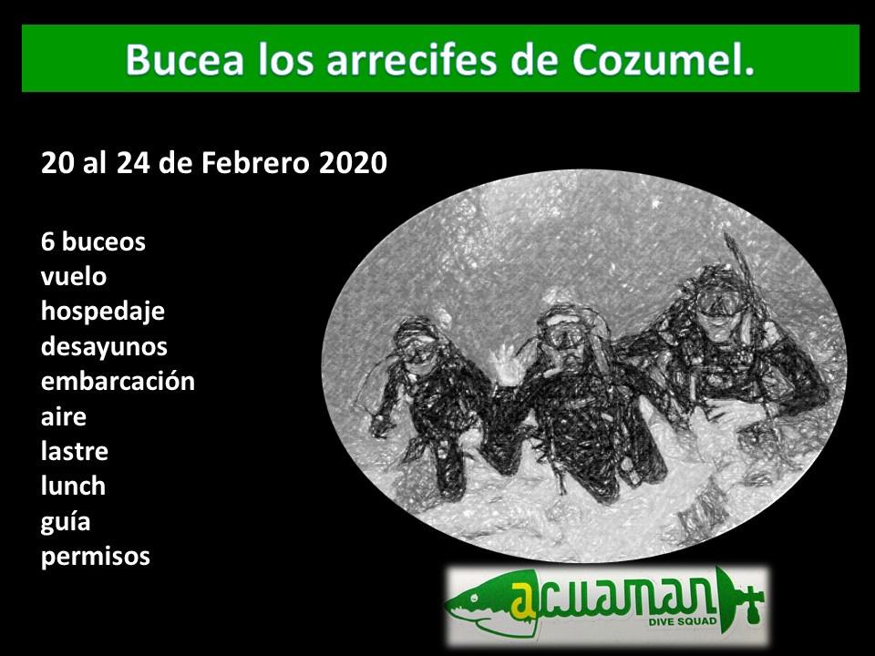 https://0201.nccdn.net/1_2/000/000/0b7/7f3/Cozumel-20---24-Feb--2020-960x720.jpg