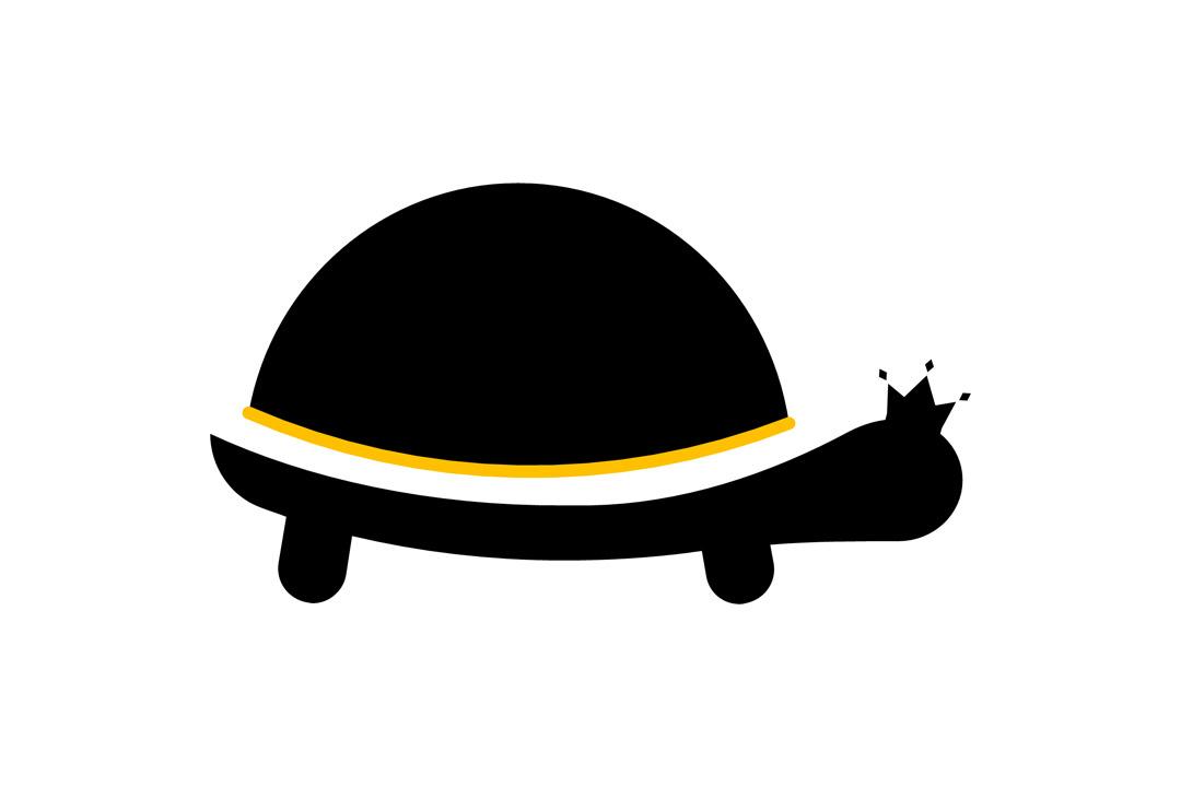 https://0201.nccdn.net/1_2/000/000/0b7/bf0/Tortoise-Flight-Systems-1080x720.jpg