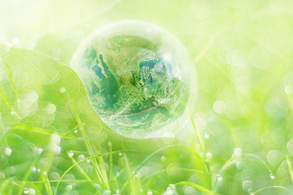 Earth In Glass Ball On Leaf