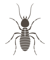 BUG Termite & Pest Control Co.