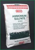Amonium Sulfate