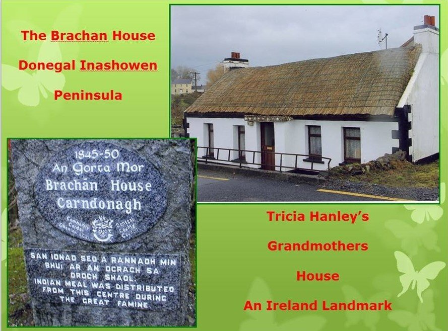 https://0201.nccdn.net/1_2/000/000/0ba/cd2/Tricia-Hanley-Grandmother-House-889x658.jpg