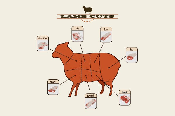 Lamb Parts