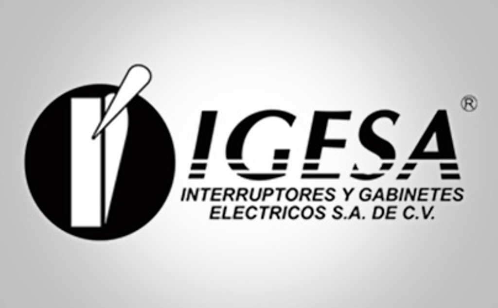 https://0201.nccdn.net/1_2/000/000/0bc/0cf/logo-IGESA.jpg