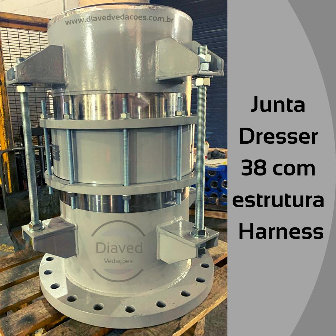 Junta Dresser 38 com Estrutura Harness