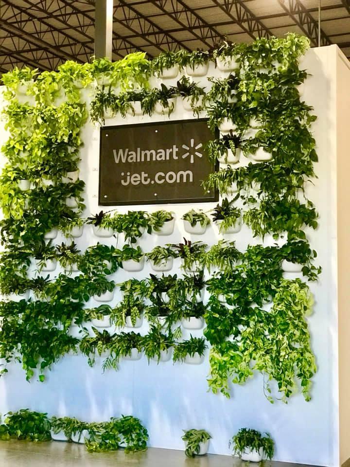Walmart Jet.com Living Wall Build 2