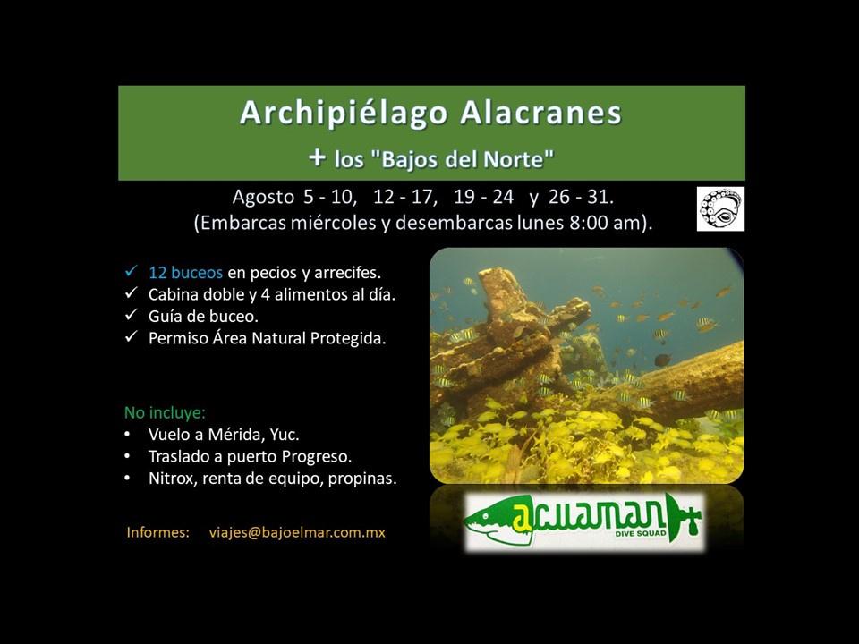 https://0201.nccdn.net/1_2/000/000/0c2/bff/Agosto--Alacranes----bajos-del-norte--2020-web-960x720.jpg