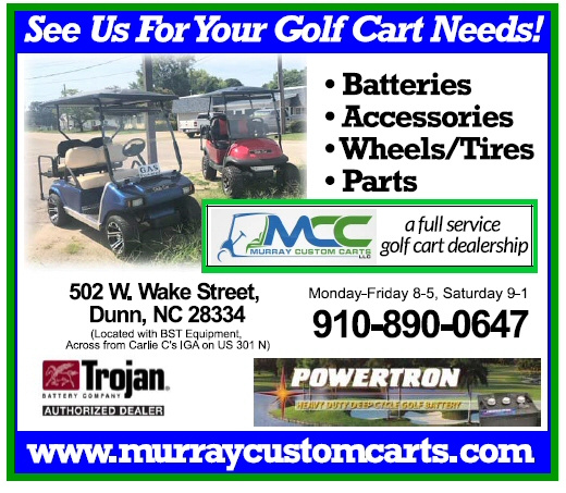 https://0201.nccdn.net/1_2/000/000/0c3/315/Murray-Custom-Carts-520x453.jpg