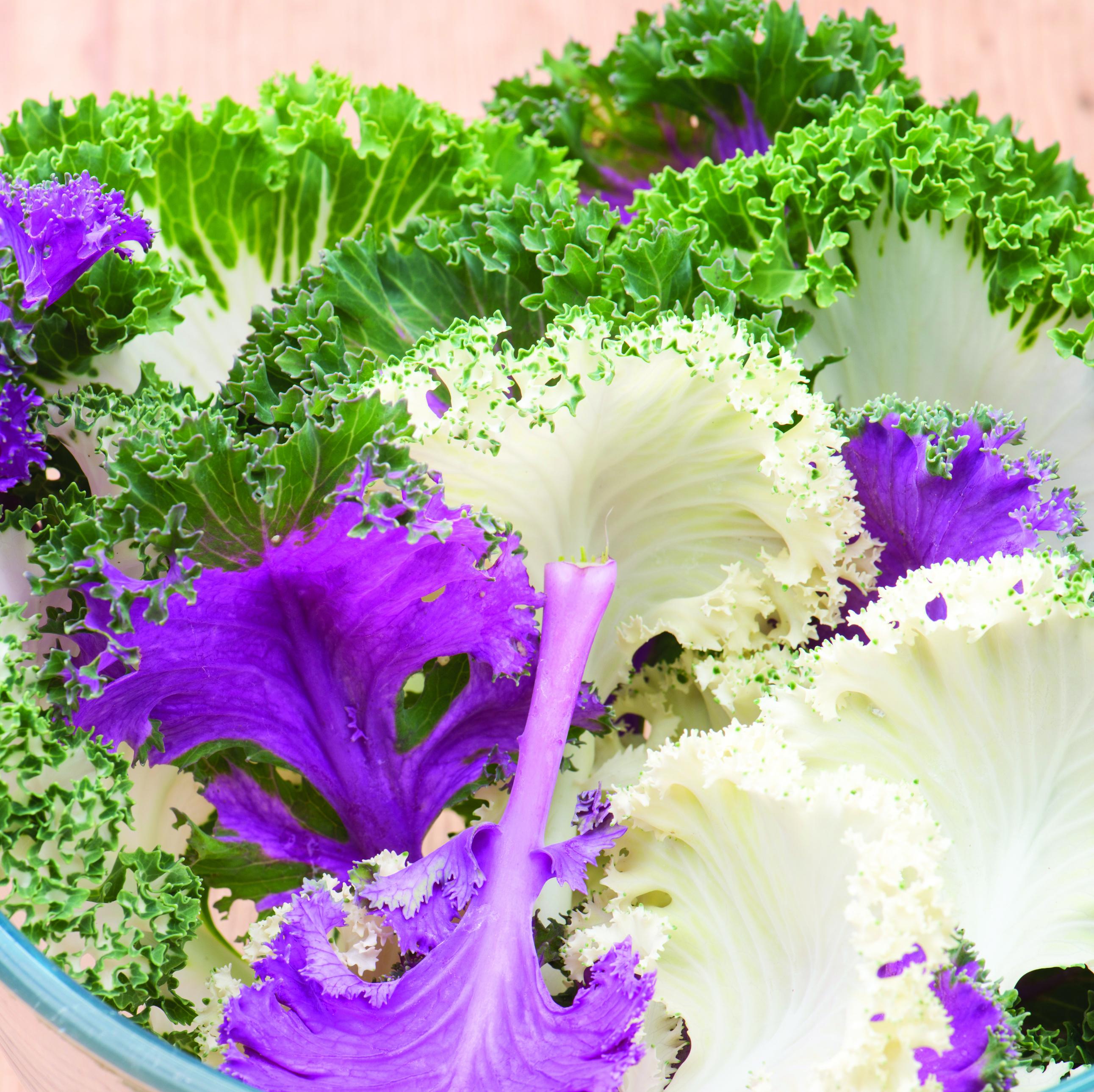 Kale, Garden Mix
