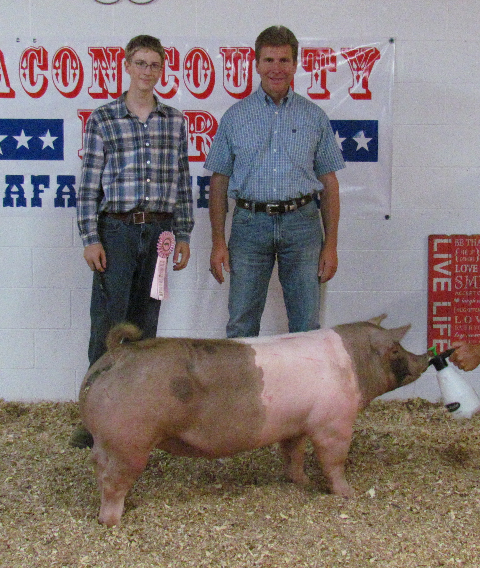 Mertz Family Macon County Fair: Reserve Heavy Weight Champion 1st, 2nd and 3rd in class
