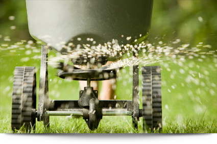 Fertilization and aeration services||||