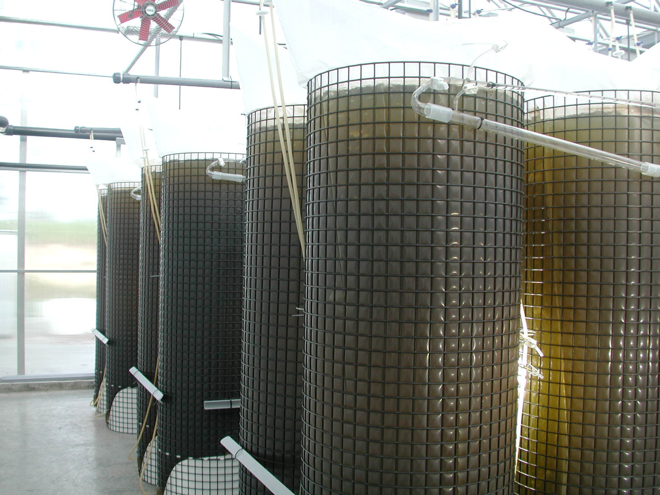 BAY SHELLFISH CO. DESIGNS, PRODUCES, INSTALLS & HANDLES TRAINING FOR SEACAPS CONTINUOUS MICROALGAE SYSTEMS  THE ORIGINAL AND LEADING SYSTEM GLOBALLY