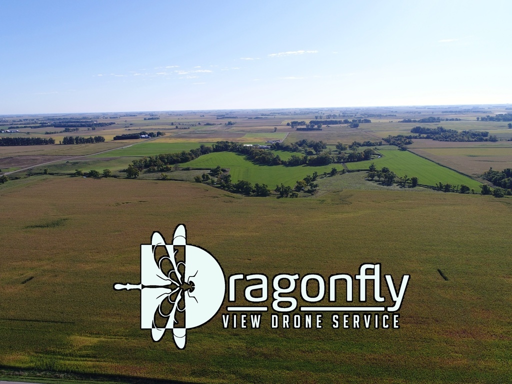 Dragonfly View Drone Service