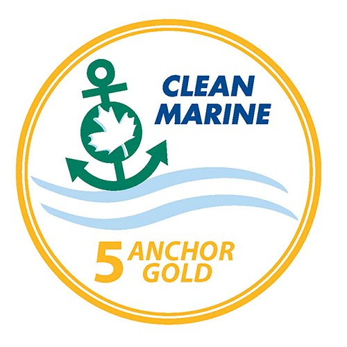5 Anchor Gold||||