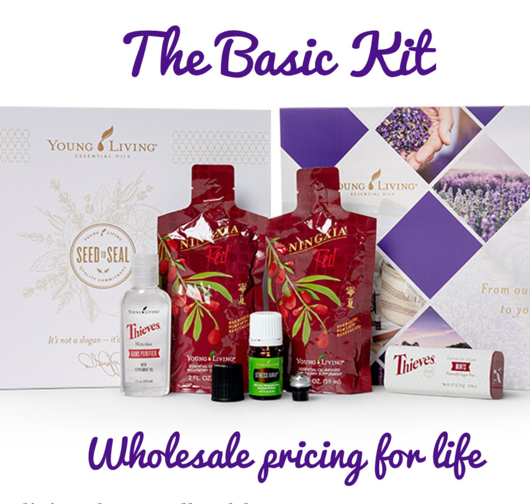 The Basic Kit
