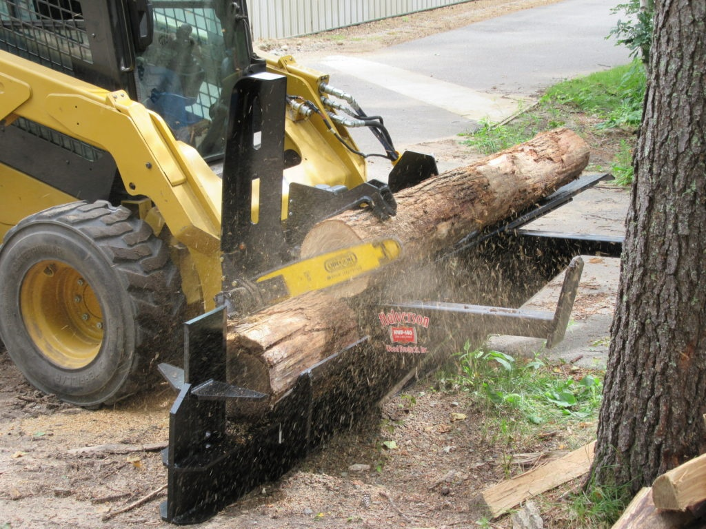Log Cut in Half