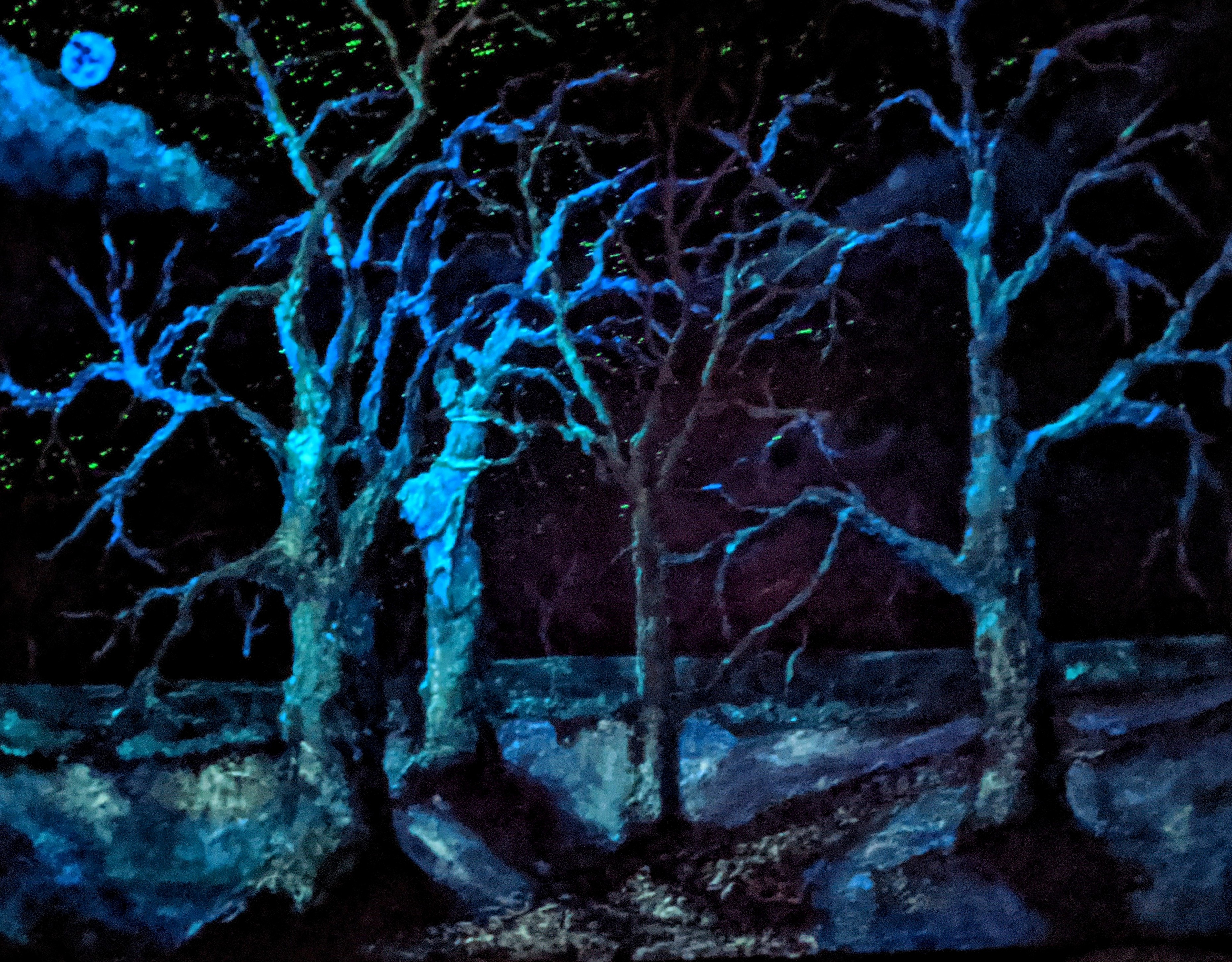 https://0201.nccdn.net/1_2/000/000/0cd/6e8/AMERICAN-WHITE-SYCAMORES----HIGHLIGHTED-WITH-GLOW-IN-DARK-LUMINESCENT-PAINT-3719x2903.jpg
