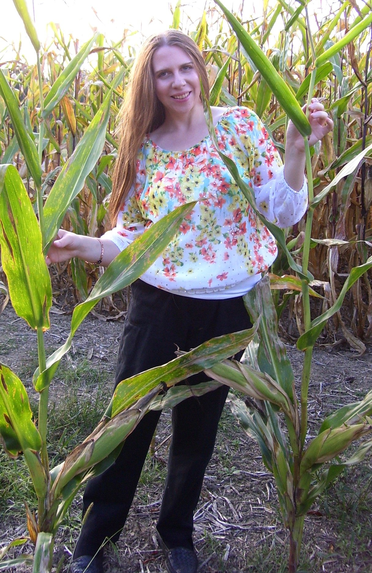 Standing in the Cornfield