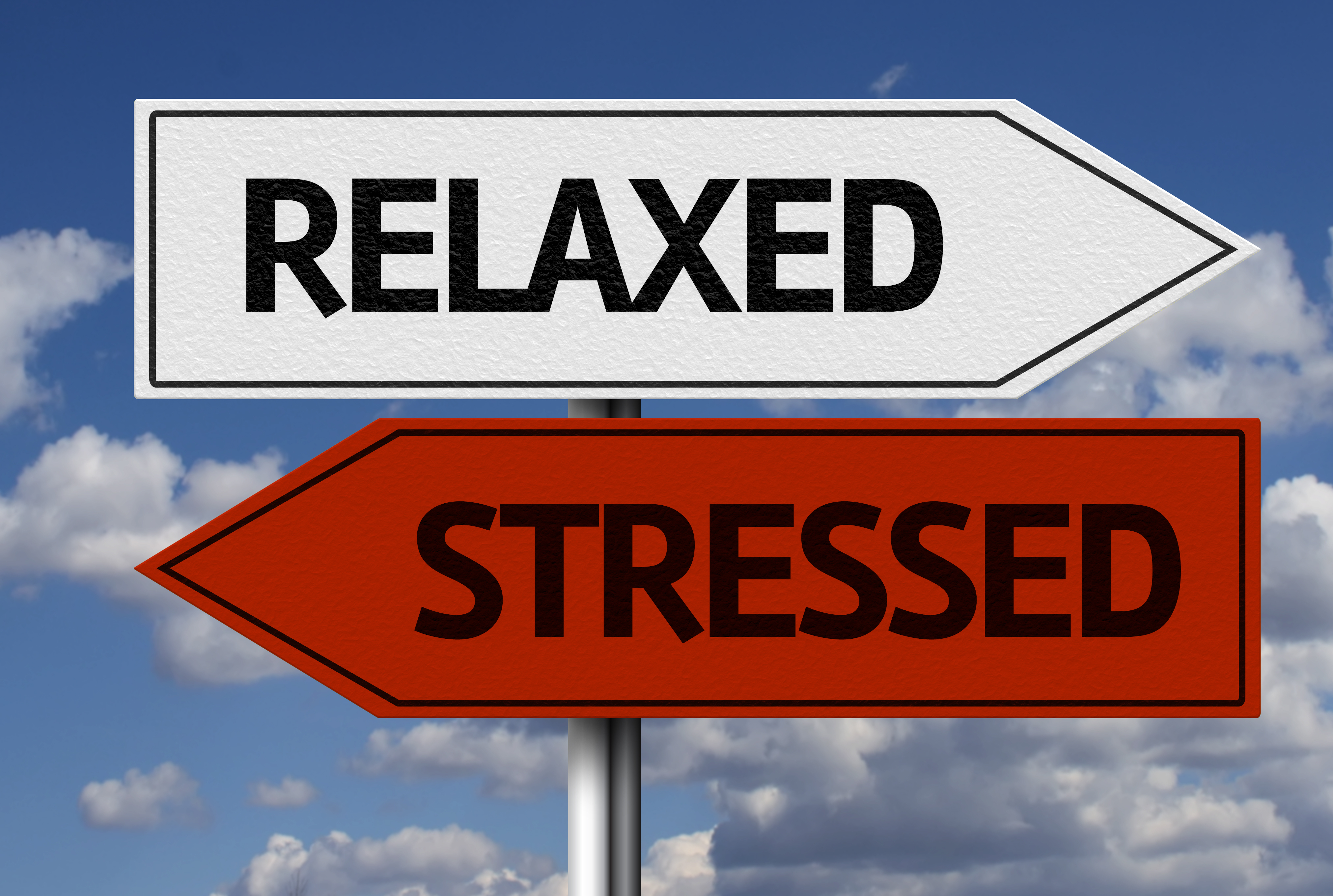Image result for CBD oil helps me manage my stress it also makes me relax.