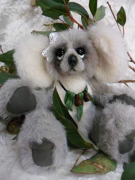 Kacie Koala