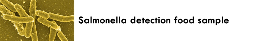 https://0201.nccdn.net/1_2/000/000/0d1/173/Salmonella-detection-food-sample-900x139.jpg