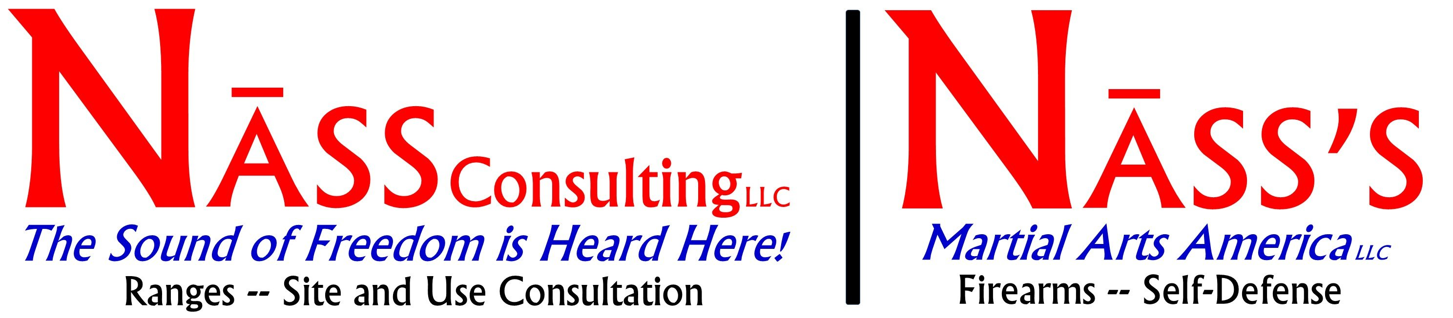 Nass Consulting LLC