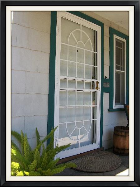 AVON SECURITY STORM DOOR