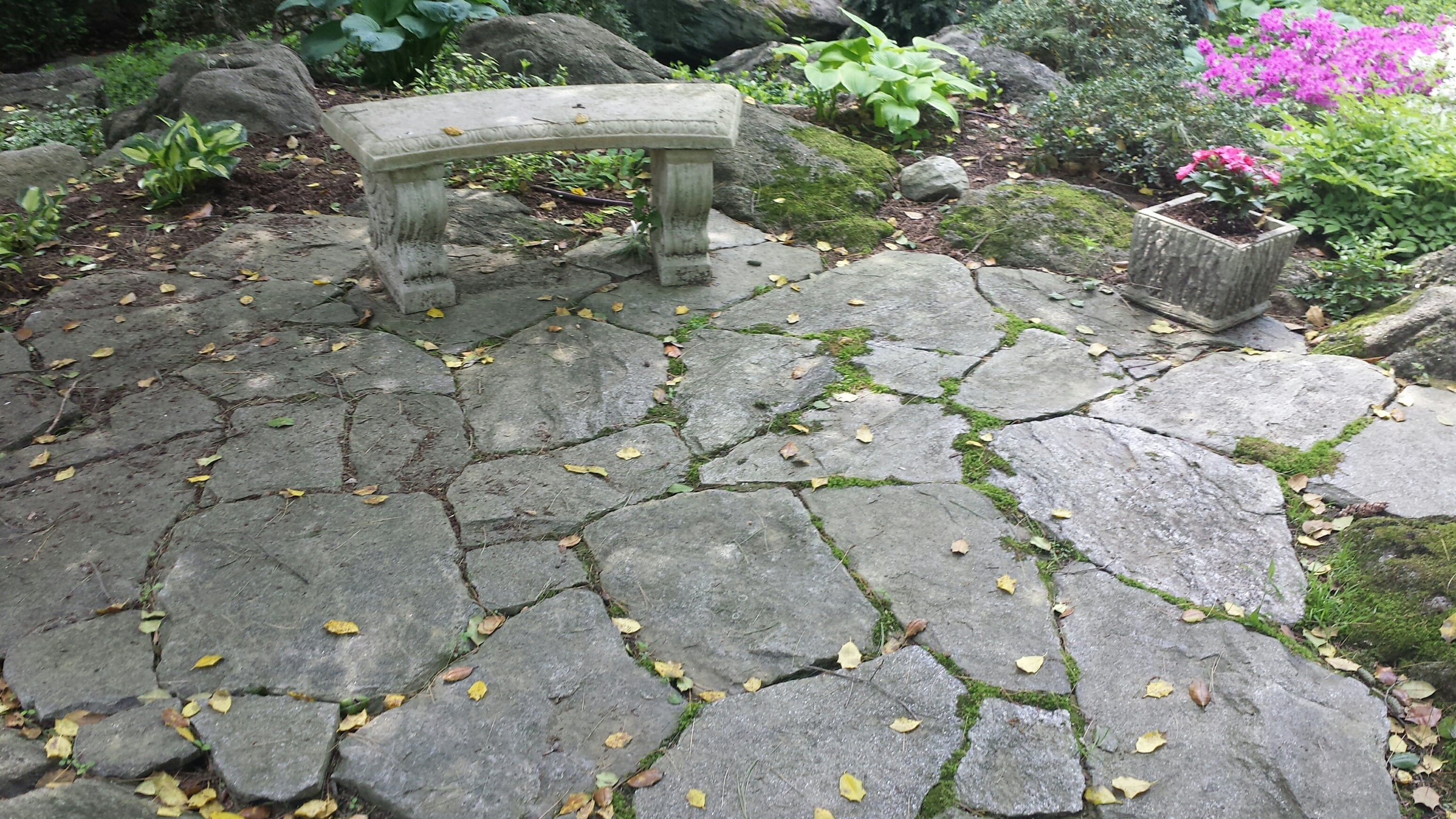 Backyard With Concrete Chair