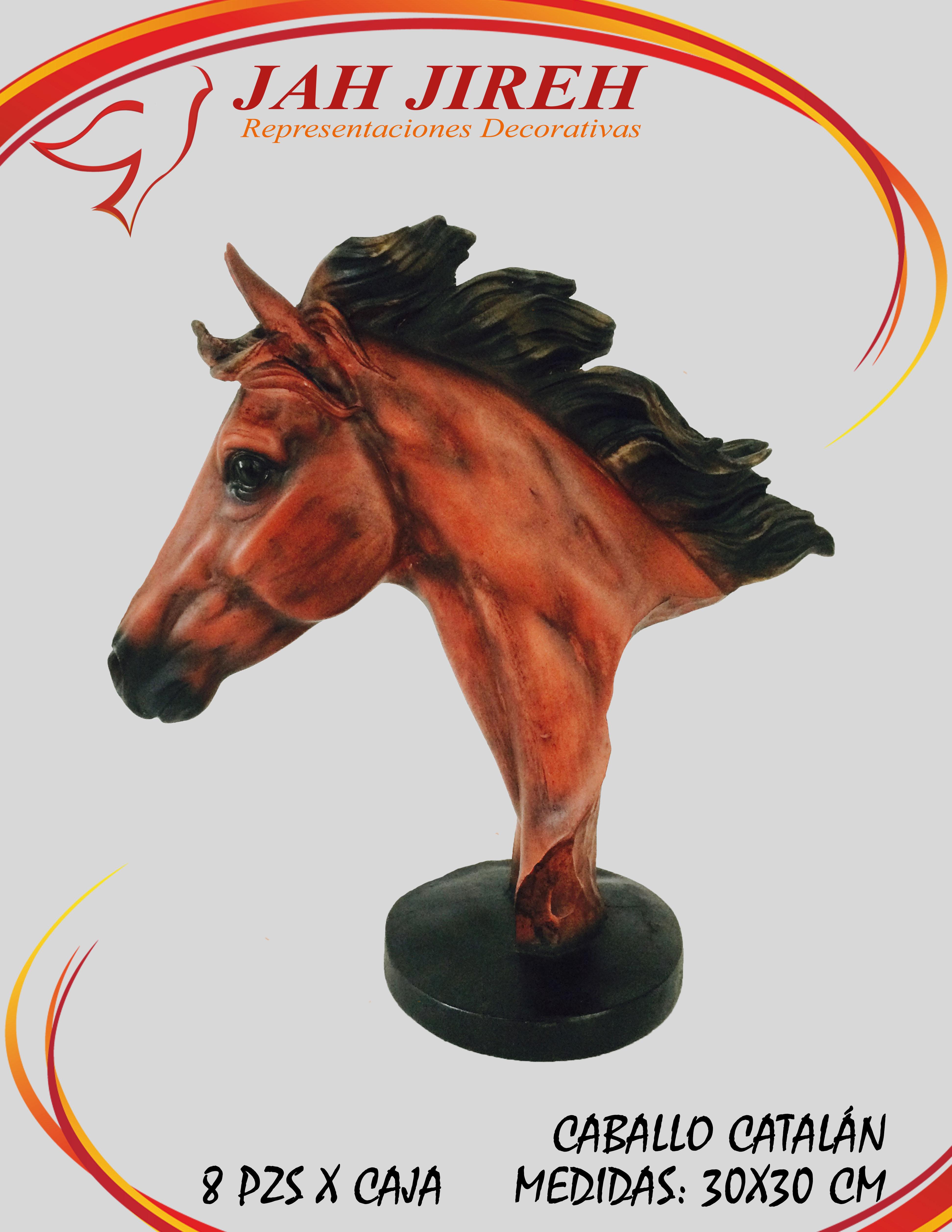 https://0201.nccdn.net/1_2/000/000/0d4/64b/caballo-catal--n.jpg