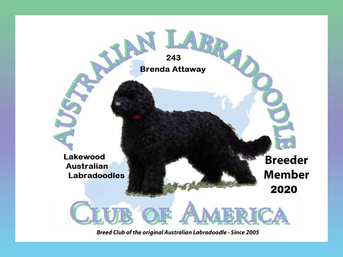 Australian Labradoodle Club of America