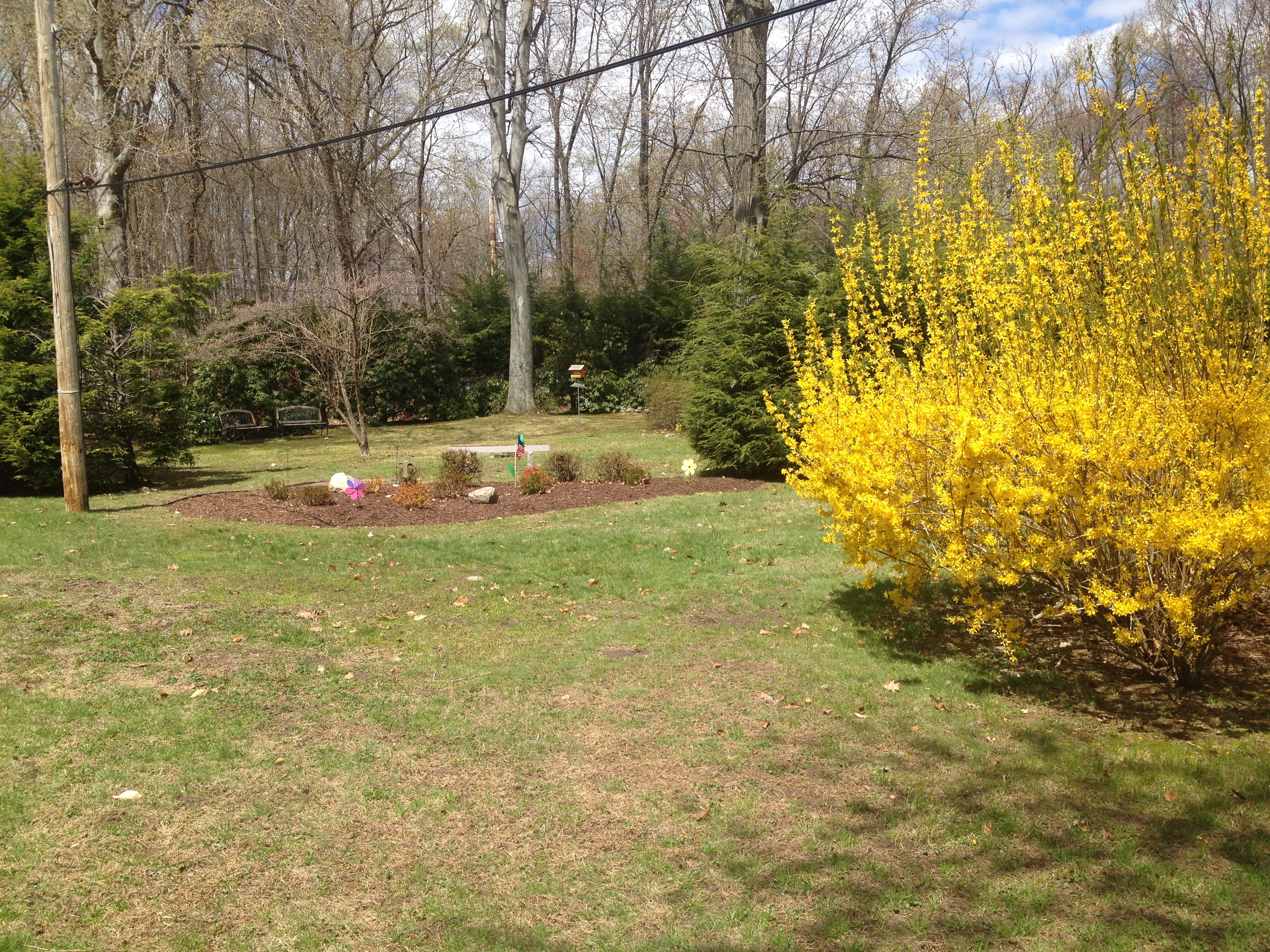 Garden of Arimathea