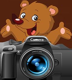 The Bear Hiding Behind The Camera||||