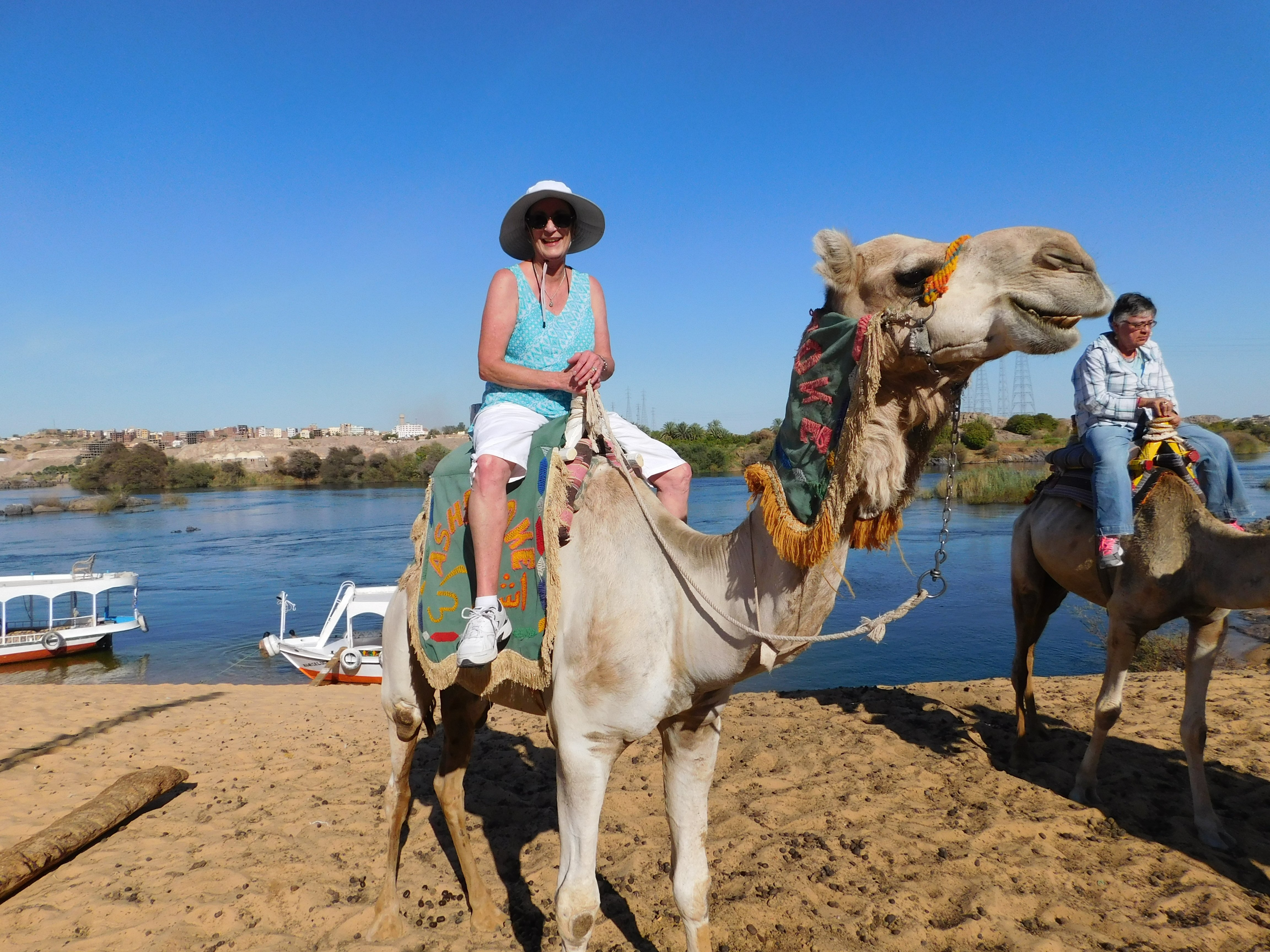 Camel ride on shore of the Nile River