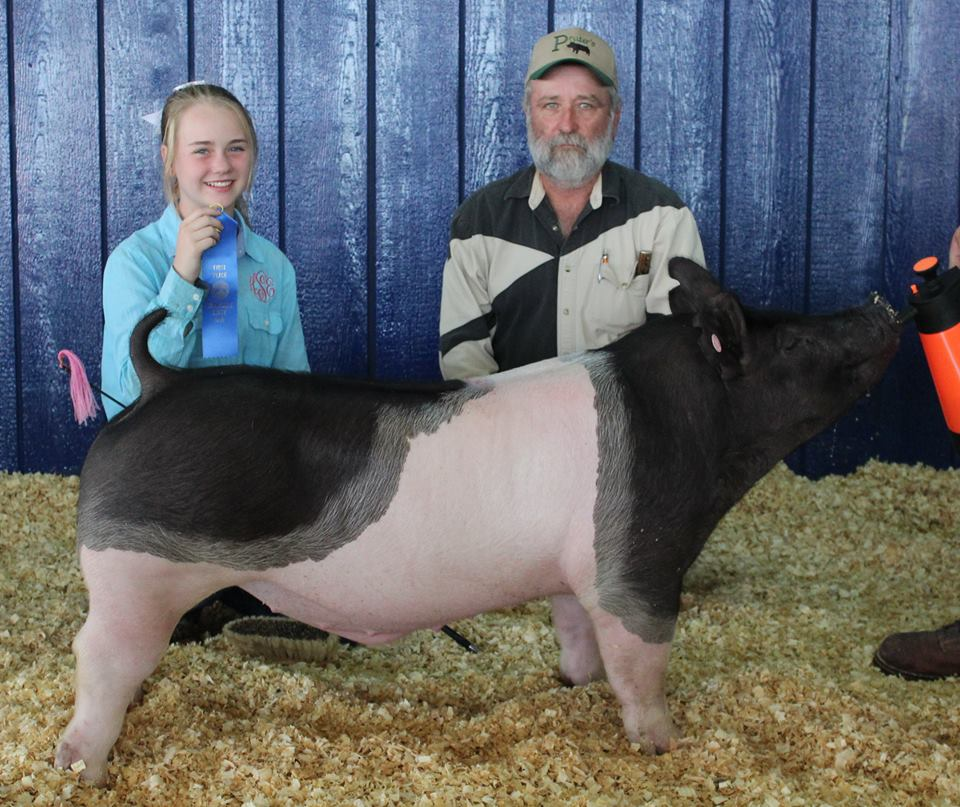 Hannah Sanders 2017 Tennessee State Fair Light Weight Crossbred Class Winner