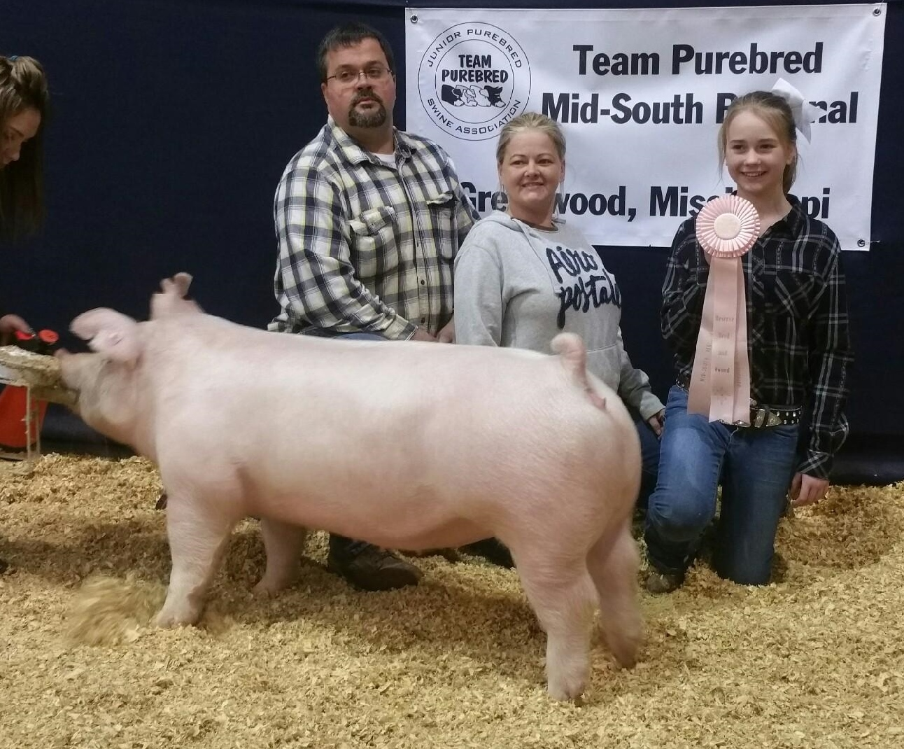 Hannah Sanders 2017 Team Purebred  Southeastern Regional Show Reserve Champion Bred and Owned Bred by: Clay Prater and Hannah Sanders