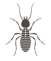 BUG Termite & Pest Control Co.
