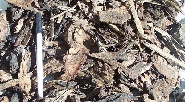 1-108 - Medium Bark