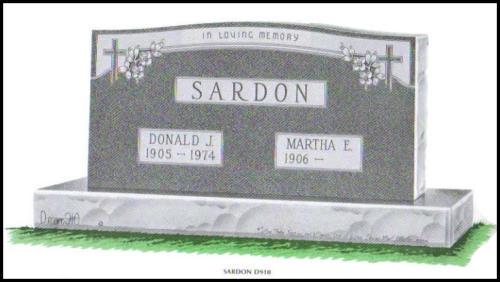 Sardon D910