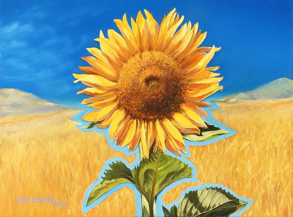 https://0201.nccdn.net/1_2/000/000/0e1/2ab/sunflower..1.fin.jpg
