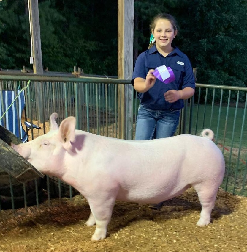 Ann Thomas Lowery 2019 Decatur County Fair Champion Yorkshire Gilt