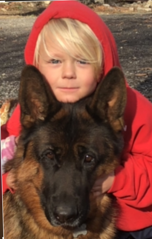 Dog And Kid In A Hoodie