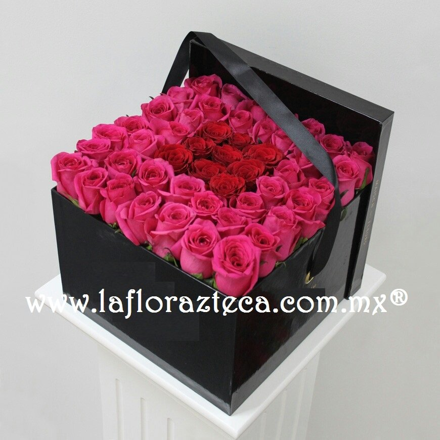 Caja 50 rosas