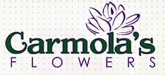 Carmola's Flowers in Massillon, OH is a flower shop.