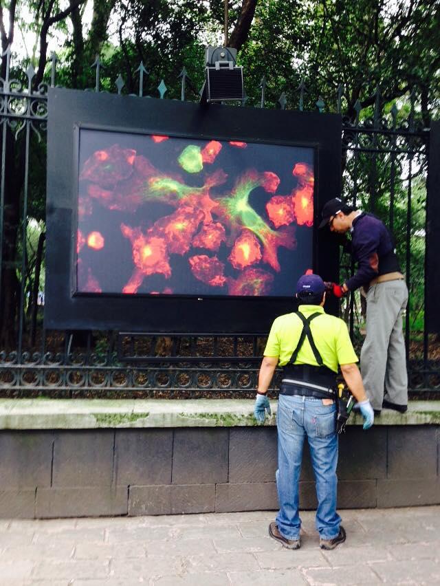 https://0201.nccdn.net/1_2/000/000/0e5/bec/clezaga-systems-exposicion-en-las-rejas-de-chapultepec-4.jpg