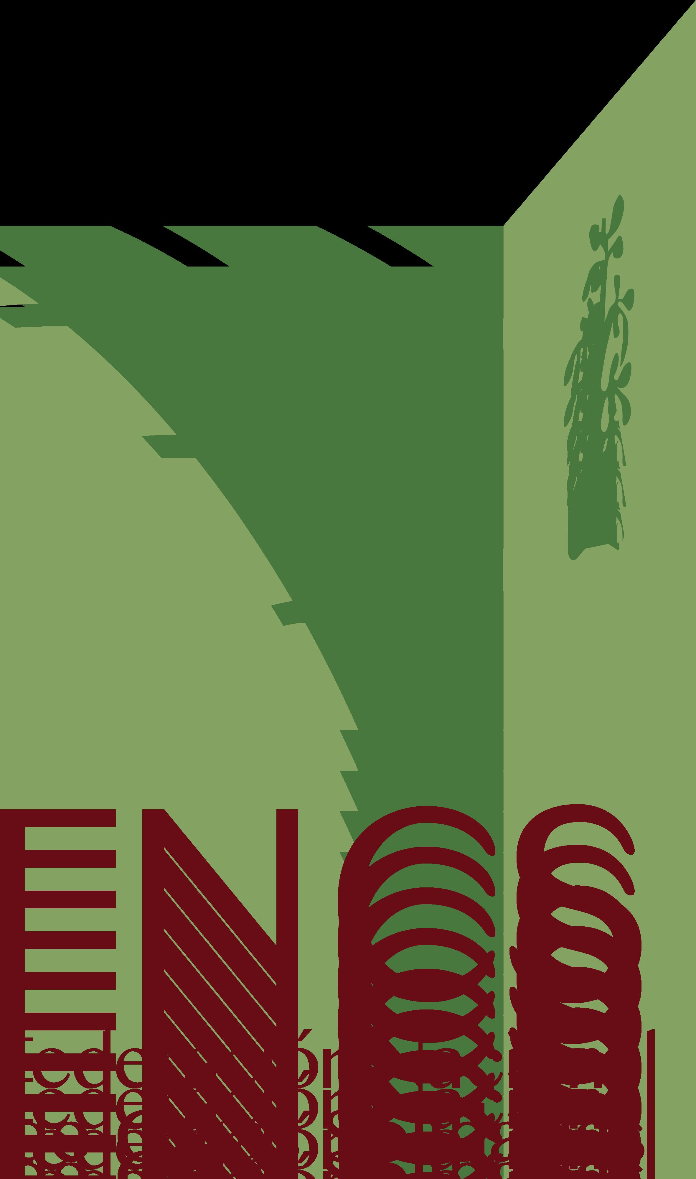 Federación Nacional De Cajas Solidarias