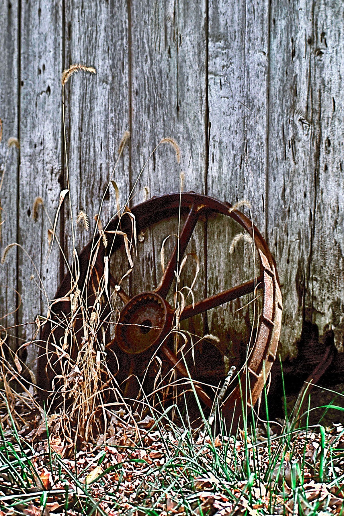 FOUND A WHEEL - I came across this old wheel laying against this old barn down in central Kentucky. I don't know... just something about it.