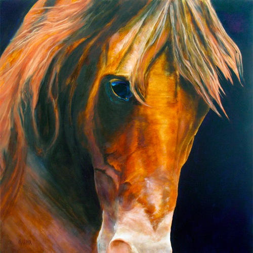 """Intensity 16: x 20"""" oil on canvas-Sold"""