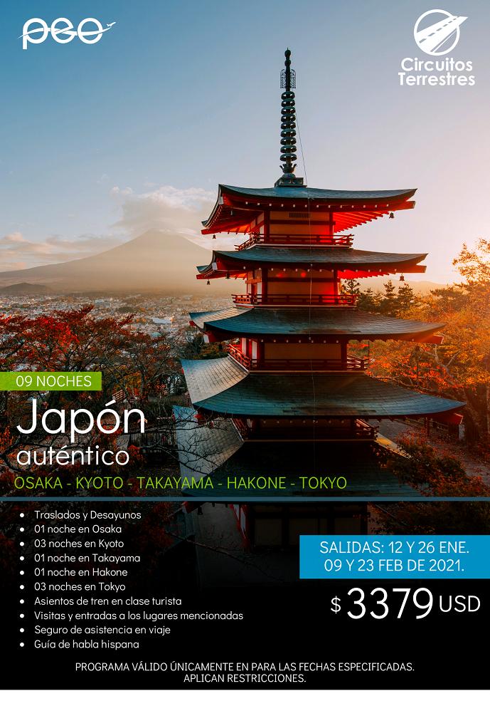 https://0201.nccdn.net/1_2/000/000/0eb/0ef/japon-autentico.png